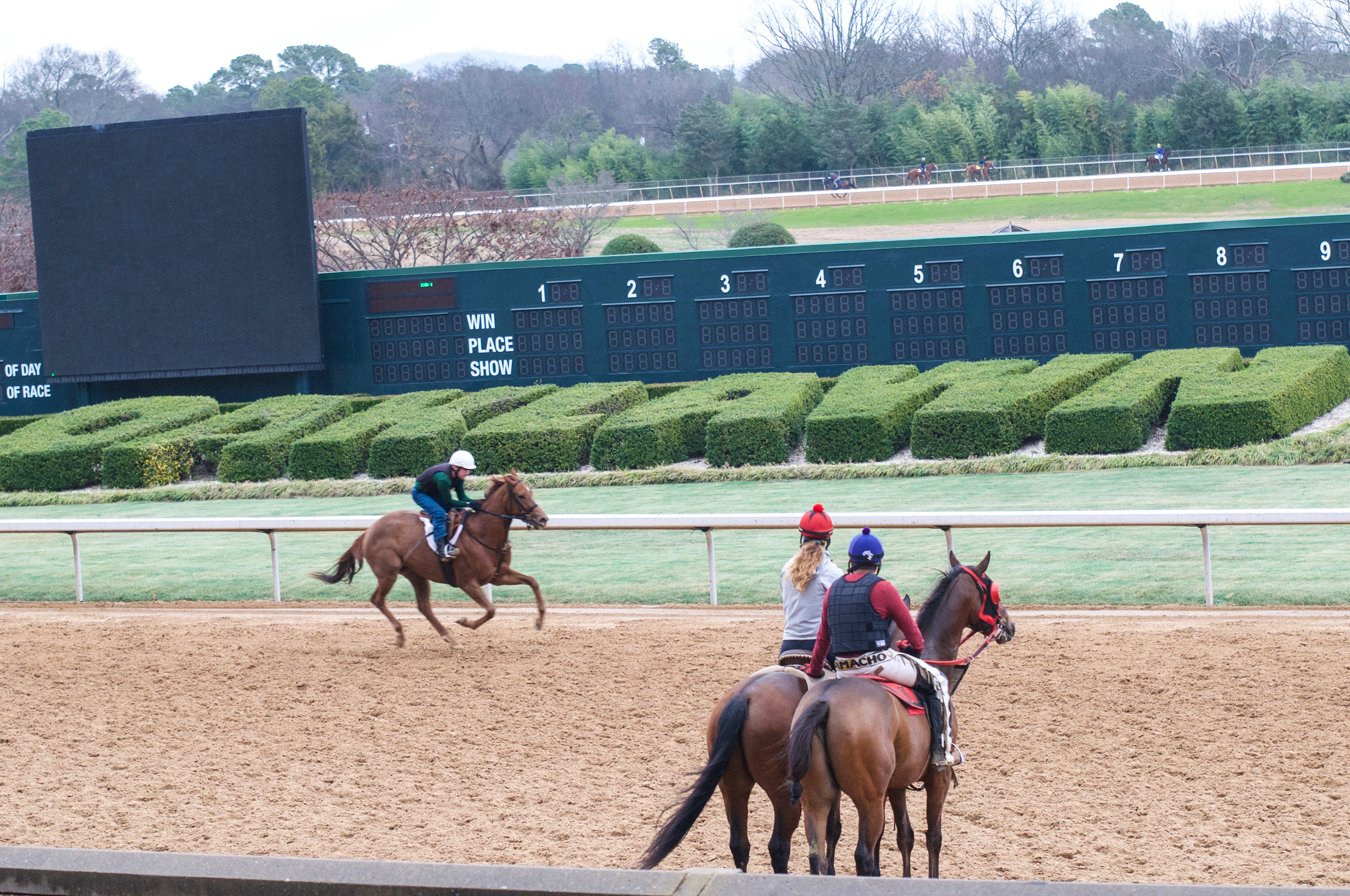 Oaklawn Racing and Gaming