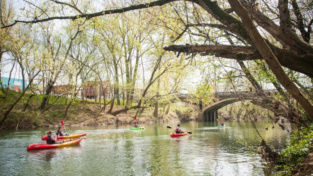 Kayaking polk bayou arkansas polk bayou in batesville freerunsca Gallery