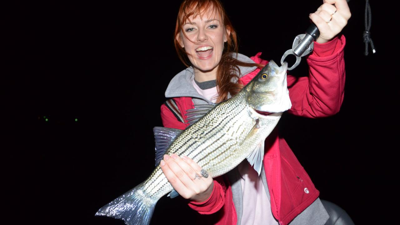 Catch big stripers at night on Lake Norfork