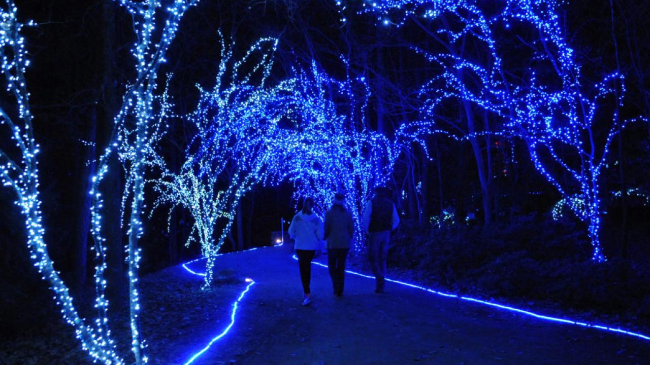 holiday lights at garvan woodland gardens - Garvan Gardens Christmas Lights