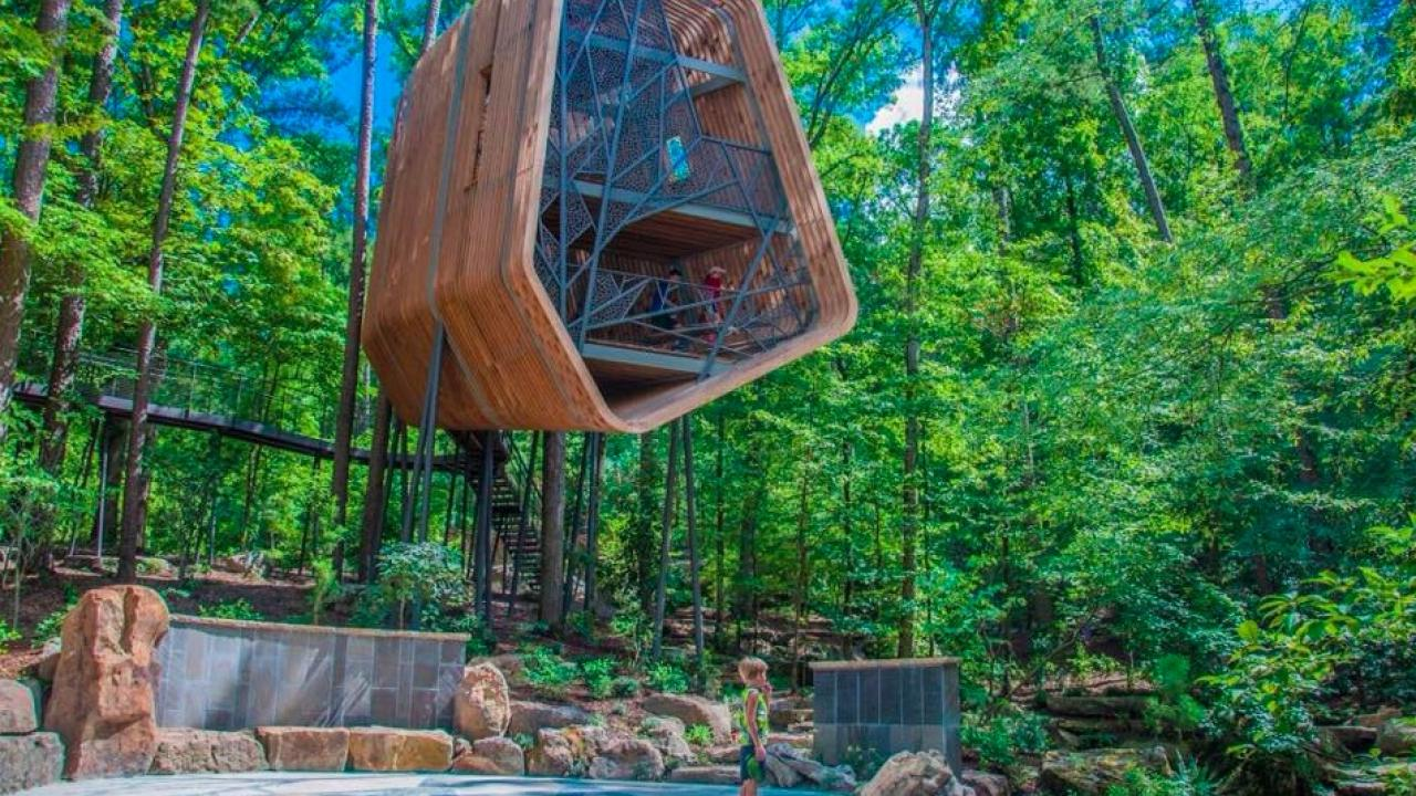 Visit The Delightful Treehouse At Garvan Woodland Gardens