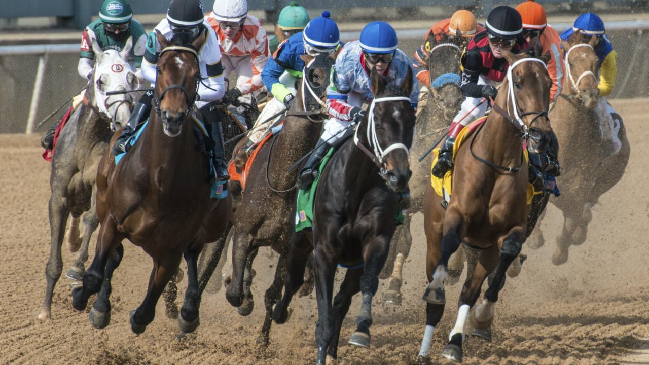 Live Thoroughbred racing at Oaklawn Racing Casino Resort in Hot Springs