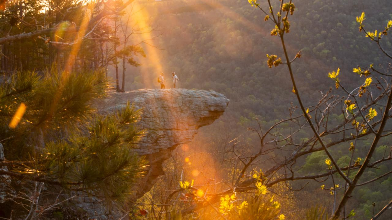 Whitaker Point Trail