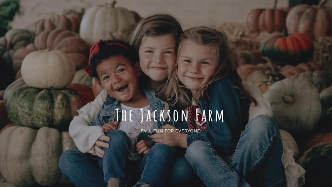 One of the Arkansas Delta's newest fall attractions, the Jackson Farm