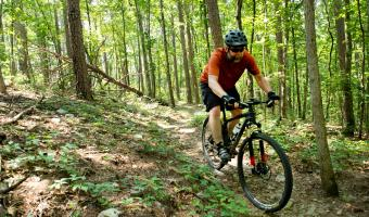 Earthquake Ridge Mountain Biking Trail at Queen Wilhelmnia State Park in Mena