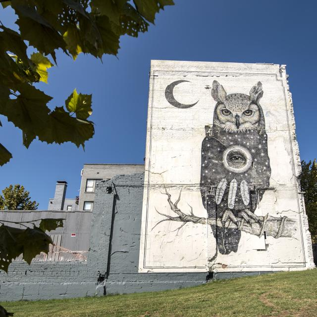 Unexpected mural project, Fort Smith, Arkansas