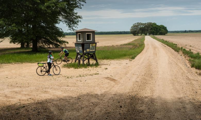 Riding a gravel grinder trail along the Delta Heritage Trail