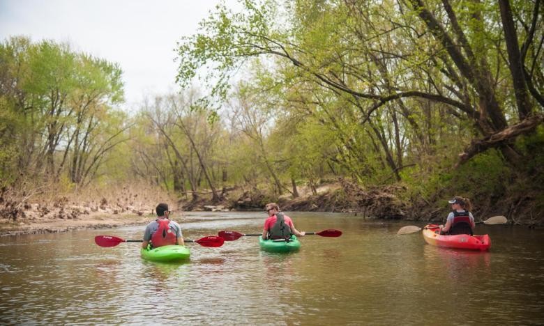 Kayaking Polk Bayou   Arkansas com
