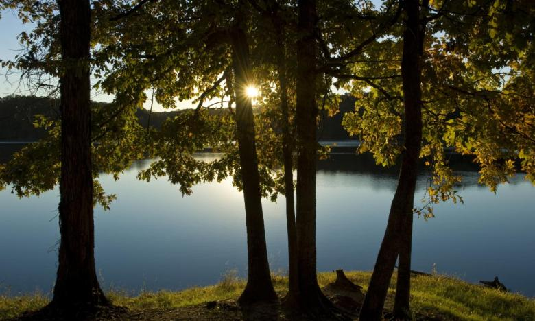 enjoy the beauty of the Arkansas Delta and Crowley's Ridge at Village Creek State Park