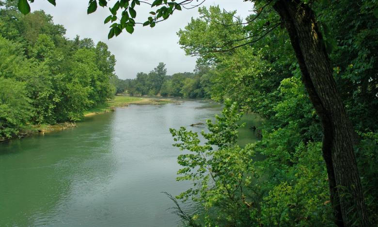 The Black River is one of Randolph County's five rivers.