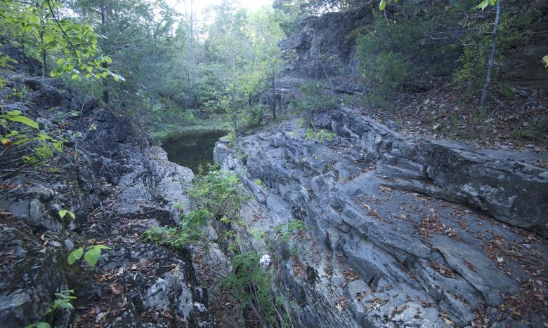 Hall's Creek Canyon is an Arkansas Natural Heritage Area.