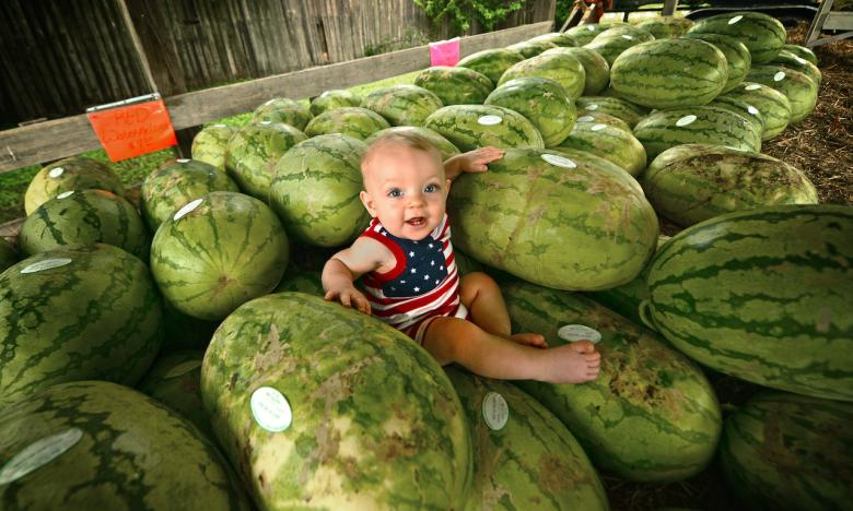 The annual Cave City Watermelon Festival is a taste worth the trip.