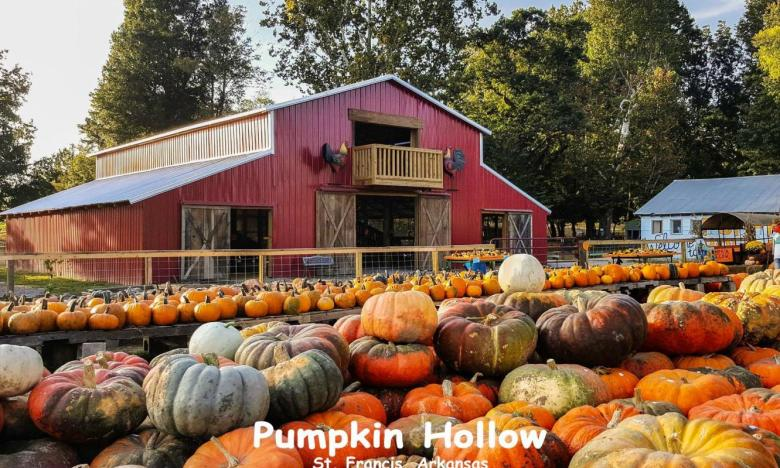 Fall fun awaits at Pumpkin Hollow