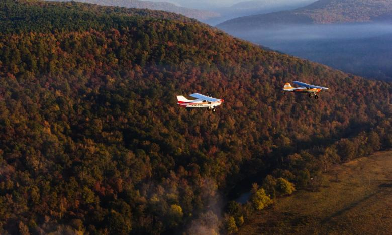 Arkansas's fall foliage is beautiful from the sky