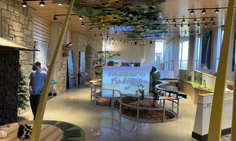 Interactive exhibits throughout the nature center
