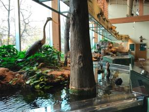 Nature Center in Little Rock