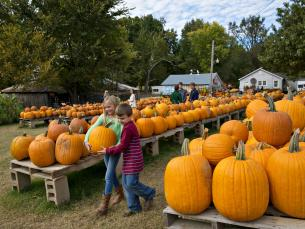 Pumpkin Hollow offers fun for all ages