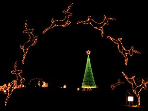 Enchanted Land of Lights and Legends in Pine Bluff