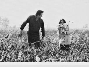 Johnny Cash and wife June Carter Cash in the fields near Cash's boyhood home in Dyess