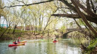 Kayaking at the Polk Bayou in Batesville