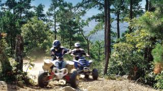 Wolf Pen Gap ATV Trails