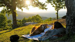 Relaxing with your dog at sunset