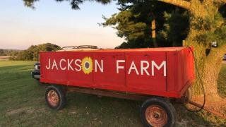 The Jackson Farm in Black Rock offers fall fun for the family