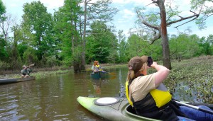 The Bayou Bartholomew Water Trail. Photo by Z. Clift