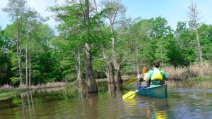 Paddling the Bayou Bartholomew Water Trail. Photo by Z. Clift