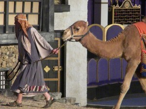 Eureka_Springs_Great_Passion_Play_camel