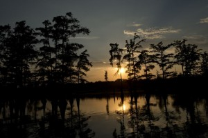 Felsenthal_National_Wildlife_Refuge_Crossett_08282012_8148