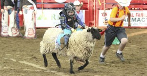 Fort_Smith_OldFortDaysRodeo_mutton_bustin
