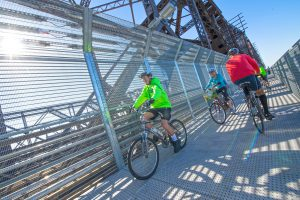 harahan-big-river-crossing-dedication-walker-bicycle2