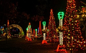 HolidayLights-1