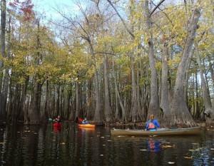 Bayou deview water trail dedication arkansas bayou deview photo by flip puttoff freerunsca Gallery