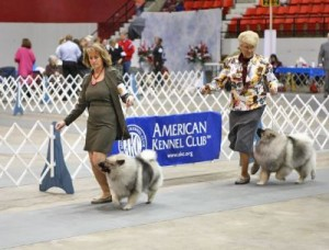 southeast arkansas kennel club1